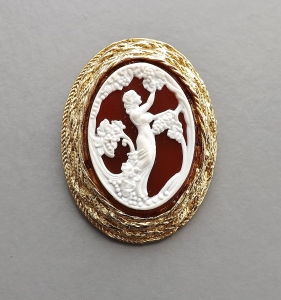 vintage 1970s plastic cameo brooch jewelry